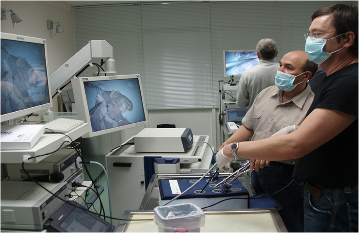 Endoscope Training by Georg Graf von Westphalen [CC BY 3.0 (http://creativecommons.org/licenses/by/3.0)], via Wikimedia Commons