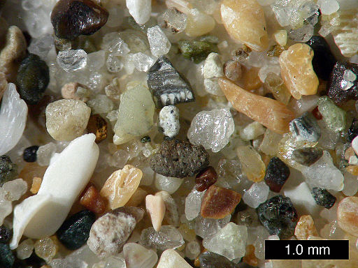 Sand from Pismo Beach, California by Wilson44691: Mark A. Wilson, Department of Geology, The College of Wooster / Public domain