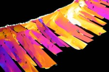 citric acid crystals under polarizing microscope