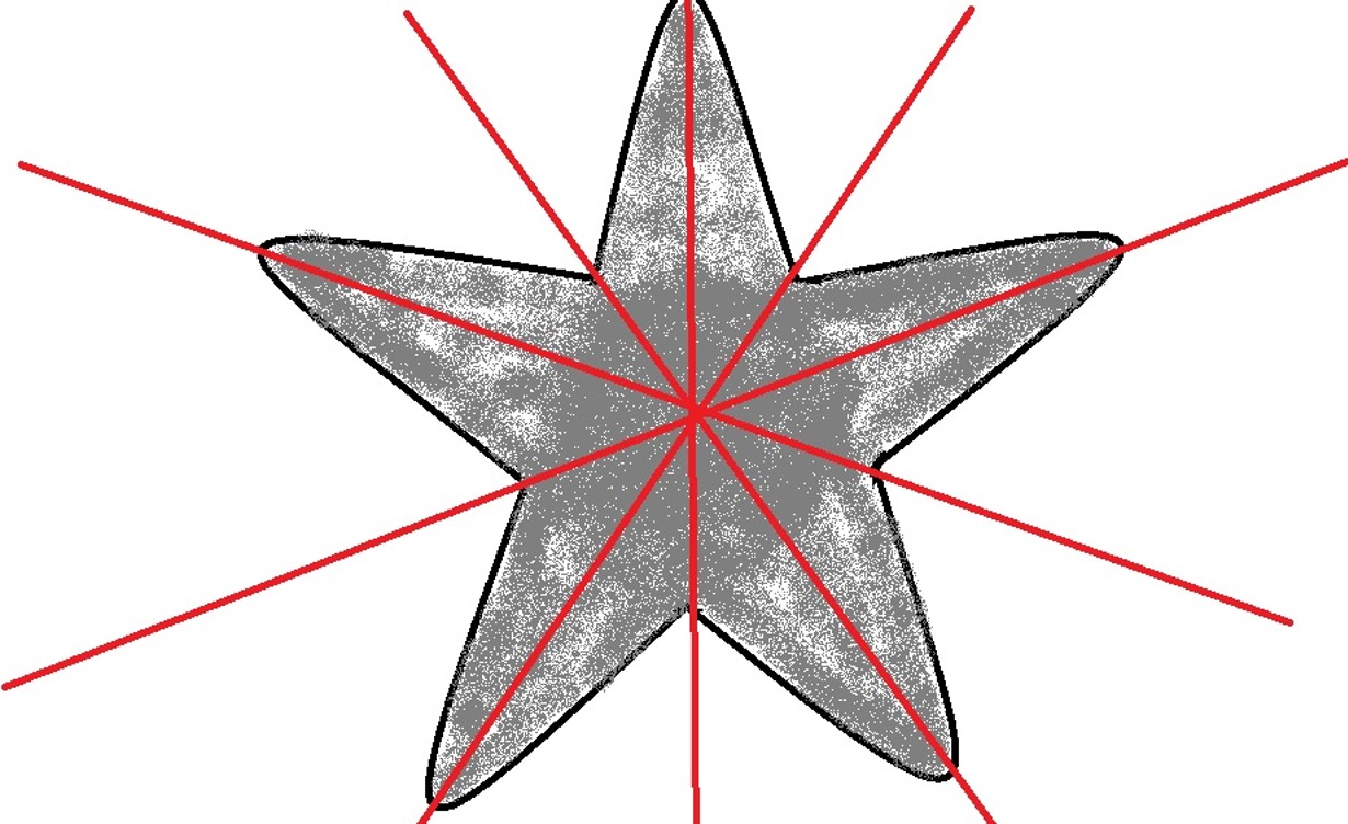 Unlike animals with bilateral symmetry, those with radial symmetry can be divided along several lines. The following image demonstrates radial symmetry of a starfish. Credit:  MicroscopeMaster.com