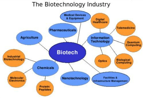 biotechnology in industry from http://www.acsu.buffalo.edu/