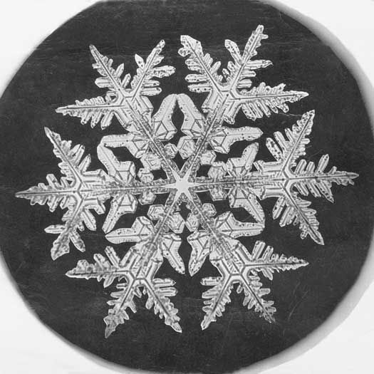 Snowflake under a Microscope with camera by Wilson A. Bentley / No restrictions